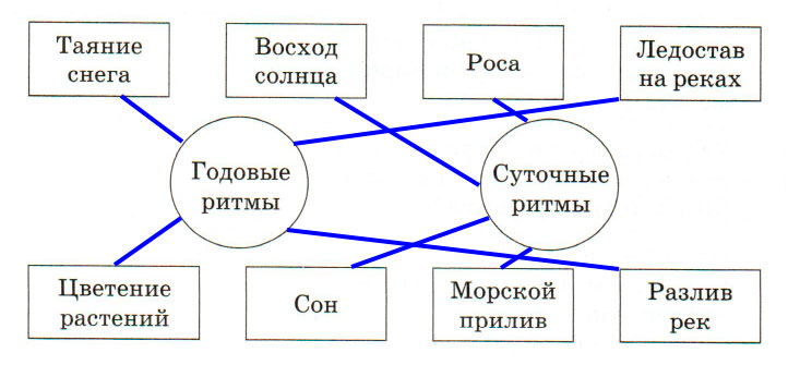 § 14. Географическая оболочка - Домогацких. 7 класс 1 часть. Рабочая тетрадь