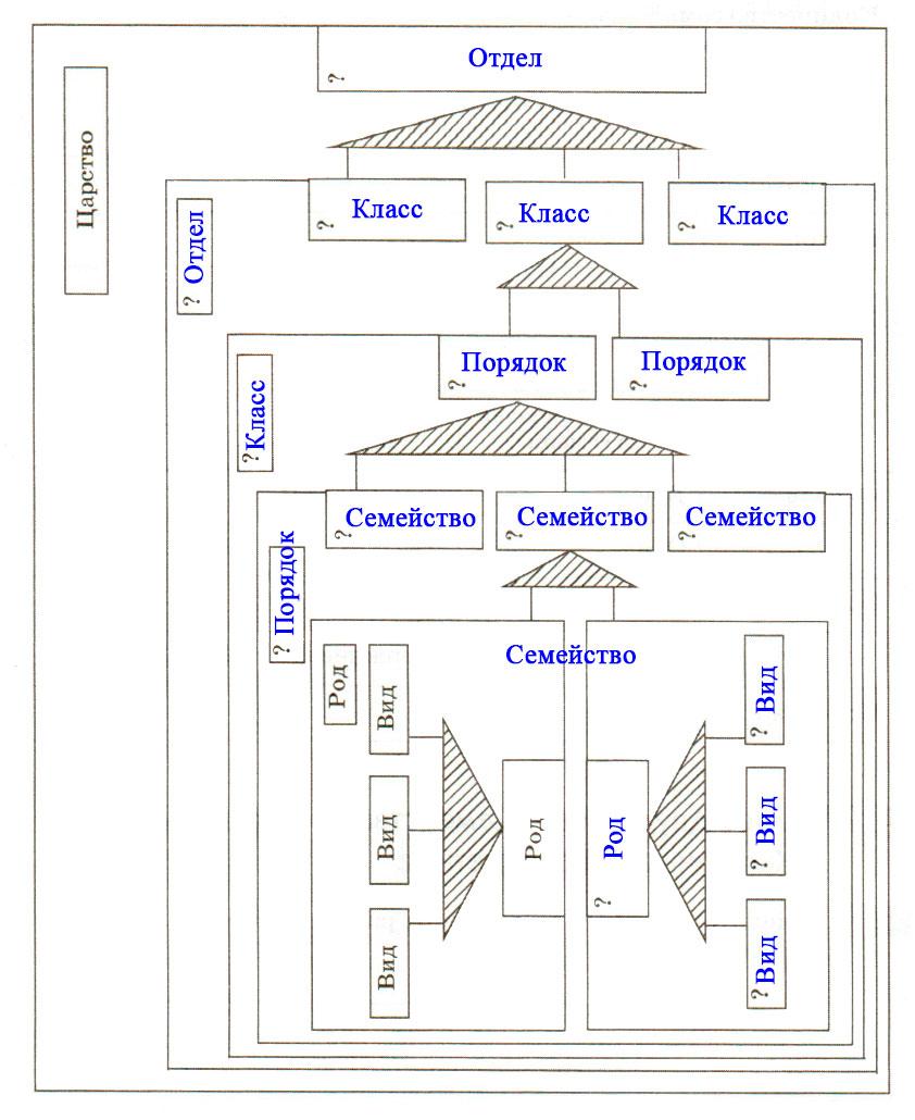 § 26. Основы систематики растений - Пасечник. 6 класс. Рабочая тетрадь