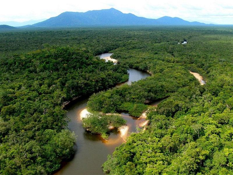 § 5. Экологические факторы и их влияние на живые организмы