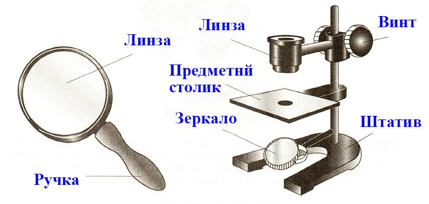 § 6. Устройство увеличительных приборов
